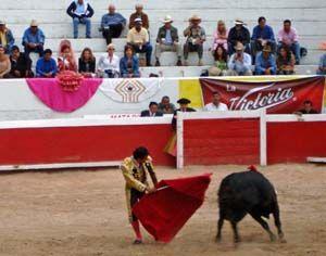 bull_fight_1
