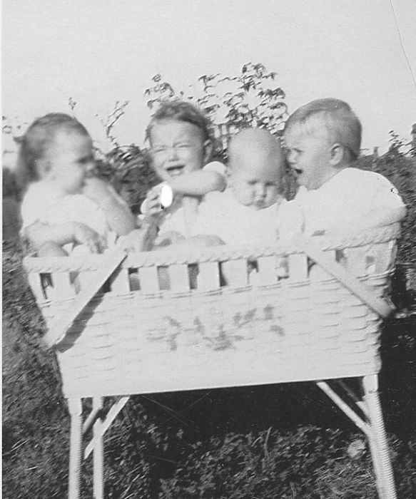 Someone thought it would be really cute to photograph all four babies in a bassinet. Jimmy and Marjorie obviously disapproved, while I gave them my usual sneer, and Ina Lou ignored them.